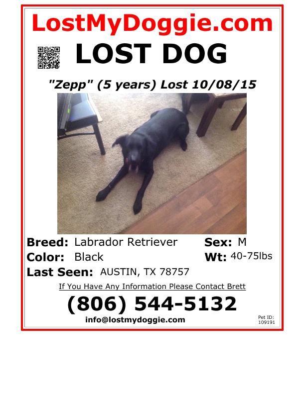 Best Lost Missing Or Stolen Pets Images On   Find