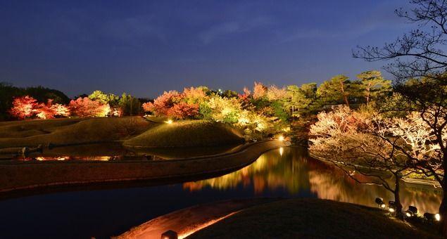 """【梅小路公園の紅葉情報】梅小路公園にある平安建都1200年を記念して作られた「朱雀の庭」の浅池「水鏡」の水面に映り込む「逆さ紅葉」は、絶好の紅葉ポイントとなっている。また、梅小路公園を代表する秋のイベント「梅小路公園 紅葉祭り」が11月17日(金)から12月3日(日)に開催される。夜の「朱雀の庭」が幻想的にライトアップされ、庭園内の約150本のモミジやアカマツが夜空に美しく浮かび上がる。ウォーカープラスの""""紅葉名所2017""""では、全国約700ヶ所の紅葉情報を掲載 !"""