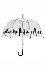 Umbrelă transparentă cu print de păsări. DecoDepot. Brasov. Umbrella. Bird print. Garden.