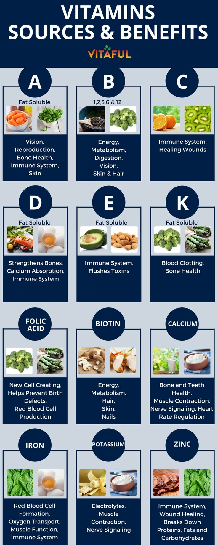 Vitamins - Food Sources and Benefits. Includes Vitamins A, B, C, D, E, K and More | Supplements | Wellness Tips | Health Infographic | #weightloss