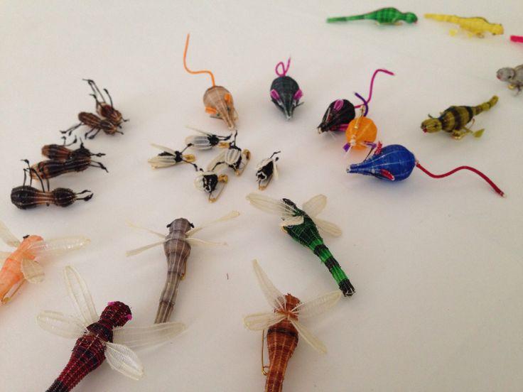 Crin insectos
