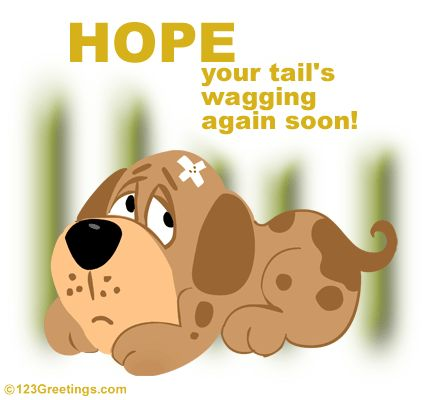 Cute Get Well Soon Cards | Hope You Get Back The Wag Soon! Free Get Well eCards, Greetings from ...