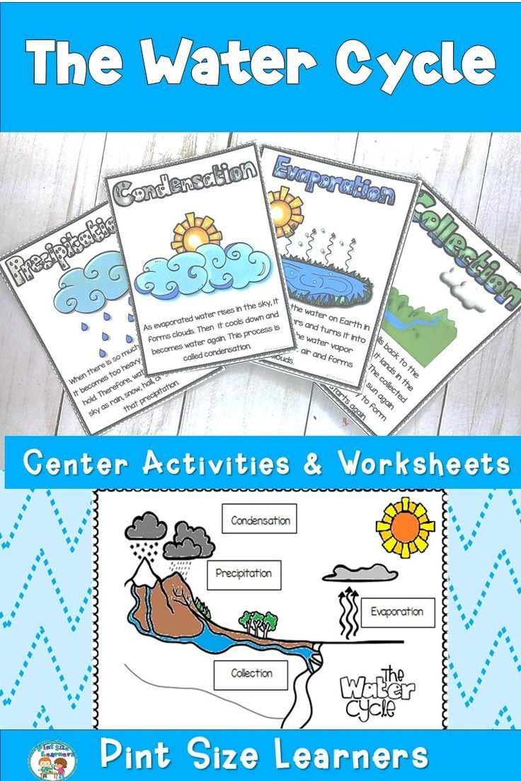 This Water Cycle Unit For First And Second Grade Students Explains Evaporation Condensation Precipitation Water Cycle Activities Water Cycle Science Journal