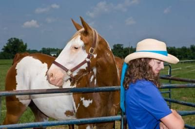 Pilot study examines effectiveness of horse-based learning | UK College of Agriculture News