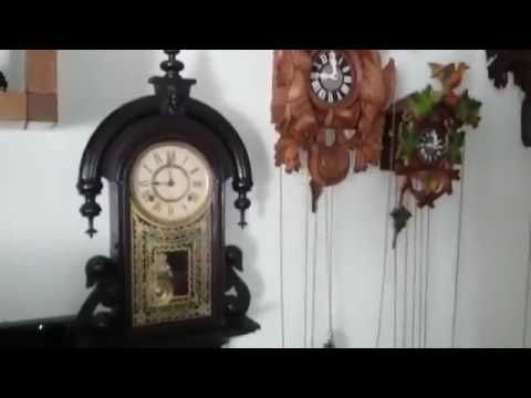 COLLECTION      OF     ANTIQUE     CLOCKS