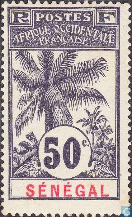 Senegal - Palm tree 1906