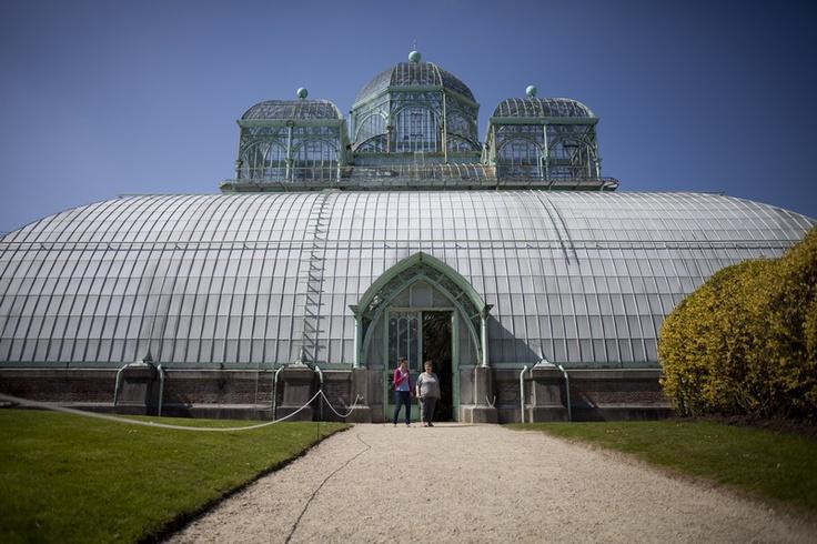 Serres de Laeken - Serres van Laken - Royal Greenhouses of Laeken © Odeta Catana