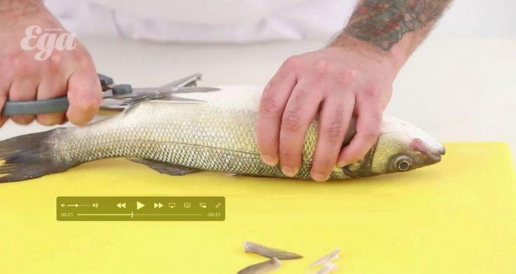 Как обращаться с рыбой. 6 видеоуроков