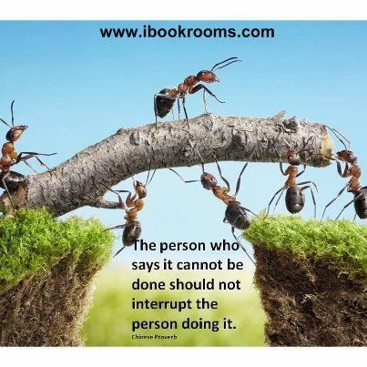 Ants February Chinese proverbs, Proverbs, Honest truth