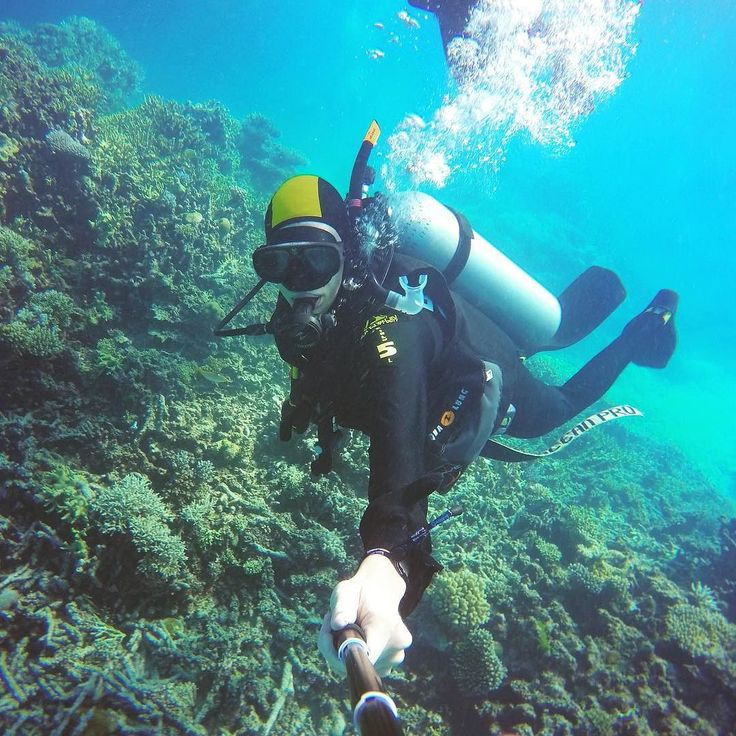Så er PADI-certifikatet gennemført #dykning #australia #greatbarrierreef #water #cylinder #diving #gopro #padi #flaskedykning #18meters #dybde #maximum #corals #nature #beautiful #colorful #sport #close #to #cairns by jepp0103 http://ift.tt/1UokkV2