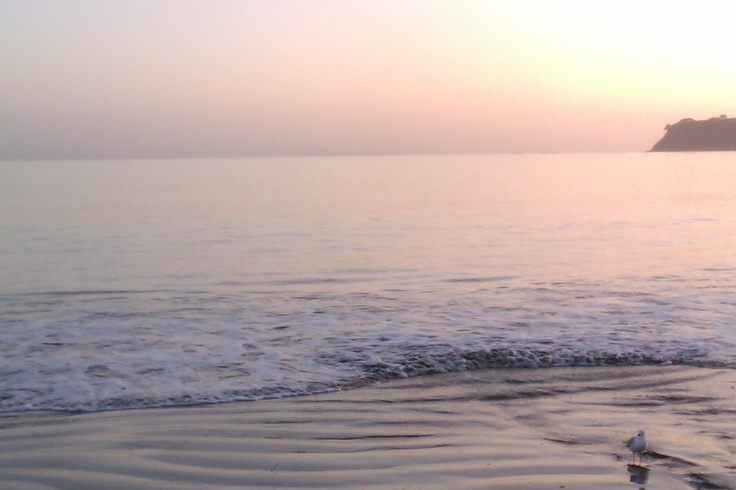 Manly Beach at Sunrise. My favorite beach ever, other than Swansea's ;).