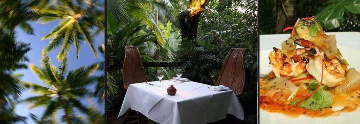 Port Douglas Restaurants   Nautilus Restaurant Port Douglas. Dine under the canopy and drink under the stars
