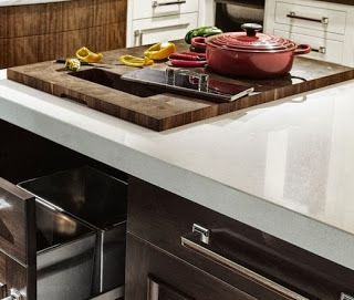 Simplifying Remodeling: Trend to Try: A Kitchen Counter Waste Hole