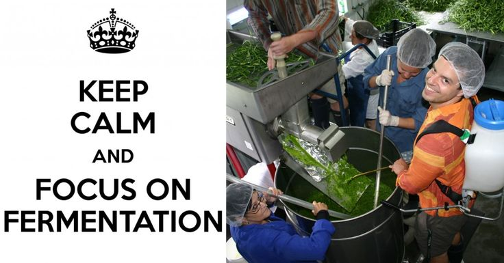Saviez-vous que la fermentation lactique permet de conserver les aliments de façon complètement naturelle, sans aucun additif chimique et sans pasteurisation?  Profitez des nombreux bienfaits de la lacto-fermentation en savourant nos délicieuses fleurs d'ail fermentées.