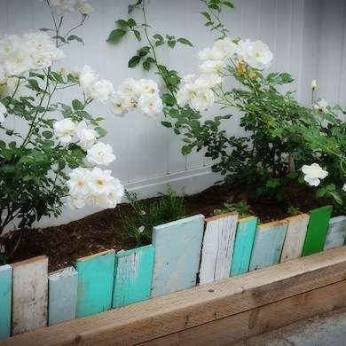 What a great way to get rid of all that left over wood and paint in the garage! Reclaimed wood, cut to various lengths, can artfully punctuate your garden beds.