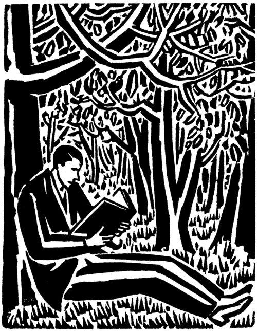 Masereel Livre Lecture Nature Forêt