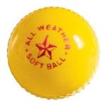 Soft Indoor Cricket Ball   $2.75