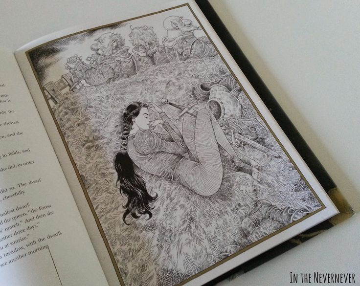 Fotoreseña: The Sleeper and the Spindle de Neil Gaiman. Ilustrado por Chris Riddell