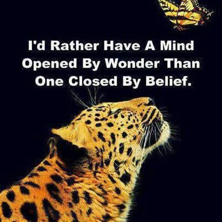 I'd rather have a mind opened by wonder than one closed by belief.