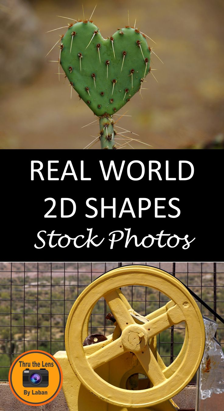 Best 25+ Dimensional shapes ideas on Pinterest | 3 ...