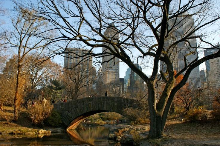 Central Park (NY) by Conrad Coetzee