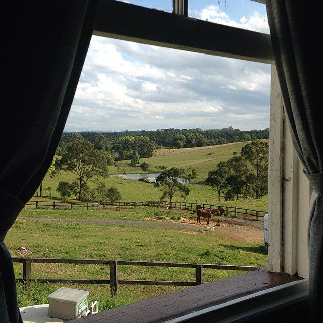The rolling Byron Bay Hinterland, out the window of the Newrybar Hall. So lush and vibrant! Such a great Wedding Ceremony Venue!