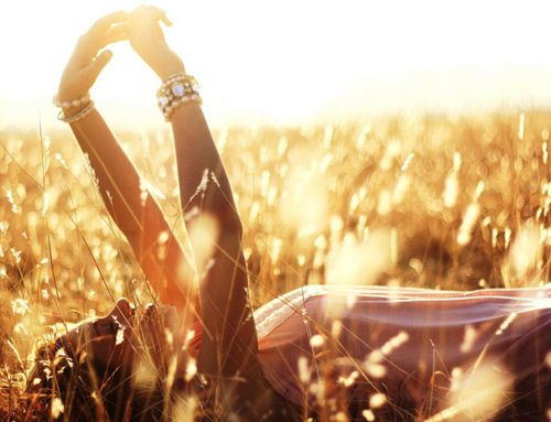 bask in the sunlight