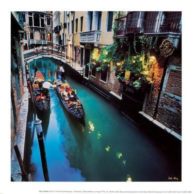 Life In Venice poster print by JohnXiong