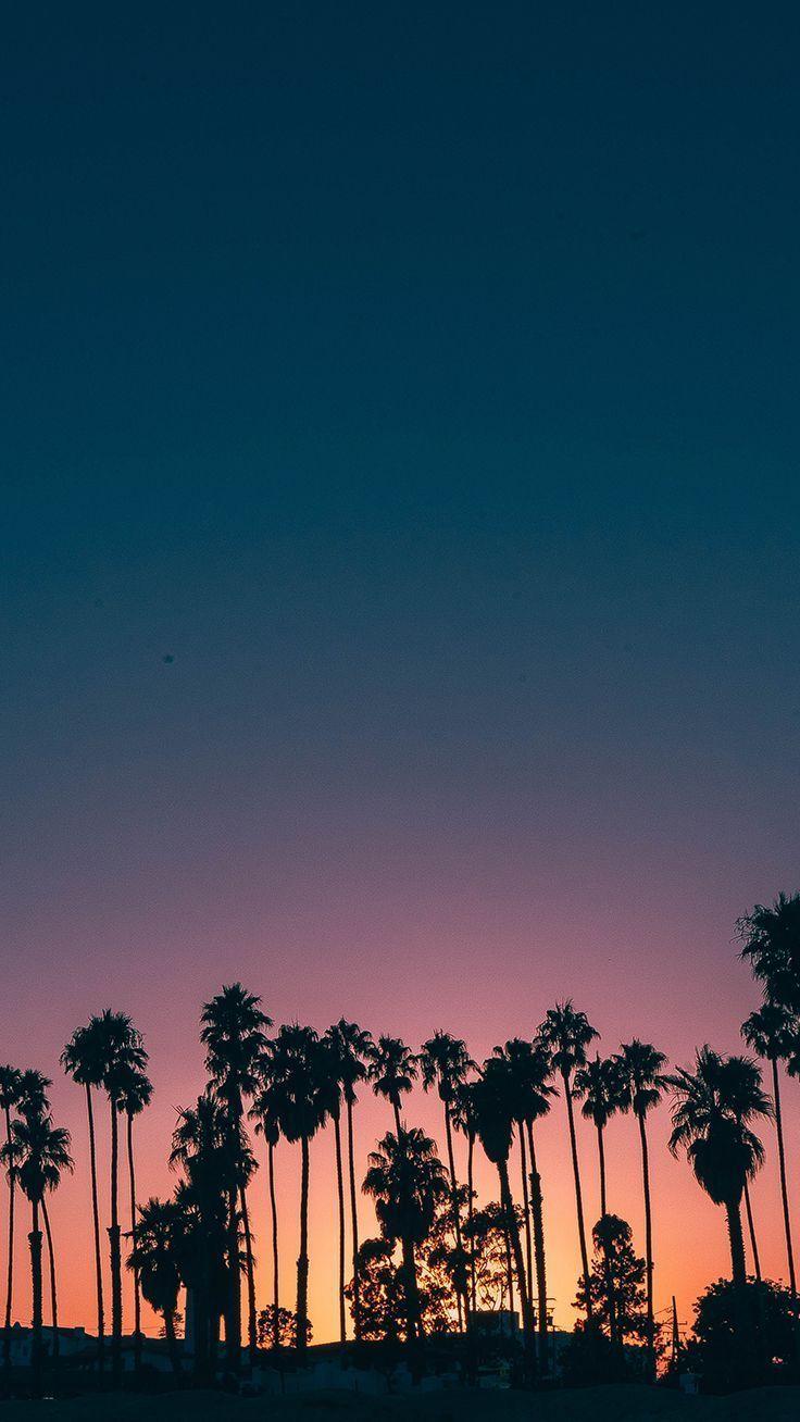 Tumblr Wallpapers – Summer Sunset iPhone Wallpaper ★ Download it at www.preppywallpap… #iphonewa