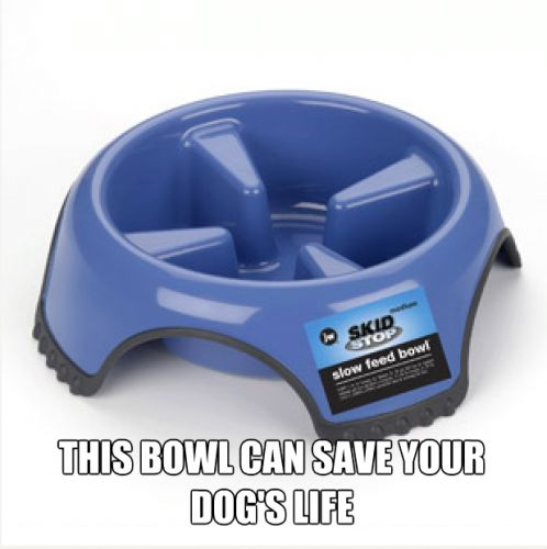 """If you have a dog or cat that eats quickly, this product is for you! It can help save their life! Many dogs eat too rapidly, which can cause bloat, discomfort and other digestive issues. Bloat, in particular, is not only dangerous, it can also be deadly, and many have lost their pets due to """"stomach turning"""" which occurs if animals eat too fast. DO NOT LET THIS HAPPEN TO YOUR DOG"""