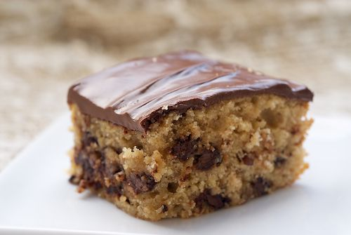 Chocolate Chip Snack Cake  ◦1 & 1/2 cups all-purpose flour   ◦1 teaspoon baking powder   ◦1/2 teaspoon salt   ◦1 teaspoon ground cinnamon   ◦1/2 cup unsalted butter, softenend   ◦1 cup packed light brown sugar   ◦2 large eggs   ◦1 teaspoon vanilla extract   ◦1/2 cup sour cream   ◦1/2 cup + 3/4 cup chocolate chips   ◦1/2 cup chopped pecans