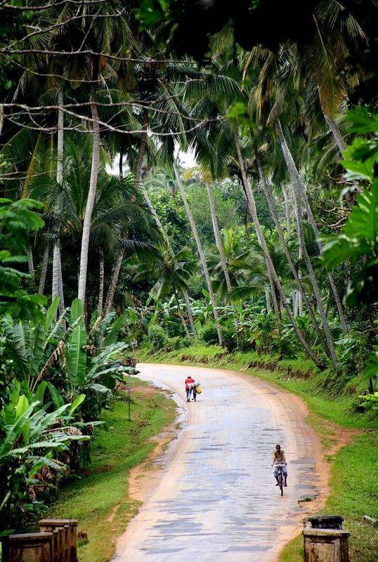 We tend to go up slowly, but down fast.. - Zanzibar by Erdem Kutukoglu