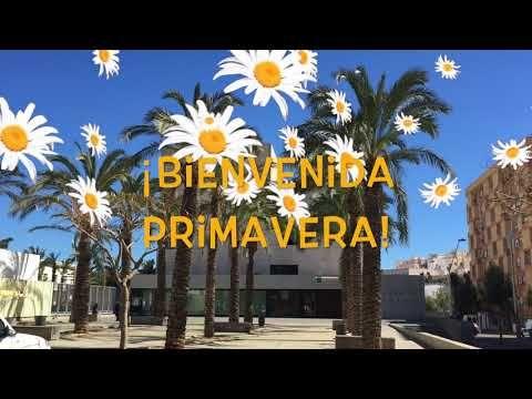 Las 4 estaciones del año llegan al Museo de Almería