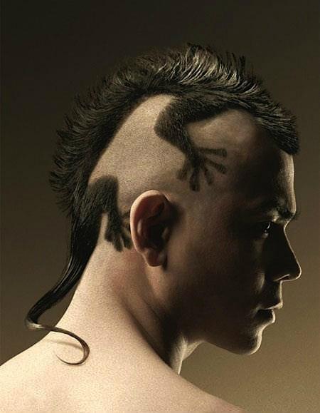 A2myj-hciaivaso: Haircuts, Hairstyles, Hair Art, Hair Cut, Funny, Hair Style, Hairart, Lizards, Geckos