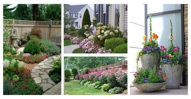 Chciałabyś, aby Twój ogród był pełen różnobarwnych roślin, które już od bramki będą przyciągały wzrok przechodniów? #kwiaty #kompozycje #ogród #rośliny #pomysły #inspiracje