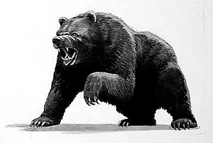 angry bear standing drawing - photo #28