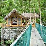 Best Costa Rica Zip Line & Canopy Tours| Costa Rica Experts