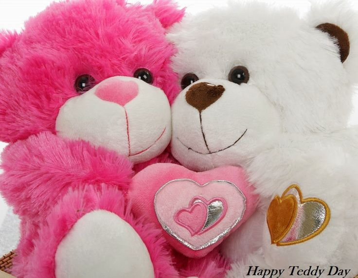 Happy Teddy Day Images, Pictures, HD Wallpapers for Facebook, Best Teddy Day HD wallpapers for desktop, Cute Teddy Day Images, Happy Teddy Day Hd Wallpapers, Happy Teddy Day 2016 HD Pictures, Happy Teddy Day 2016 HD Images, latest HD pictures of Teddy Day, cute teddy day pictures 2016, Happy Teddy Day Images, Teddy Day 2016 date, best valentine day gift, pink teddy, white teddy