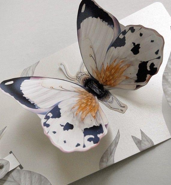 Объемная открытки бабочка, любви отцу