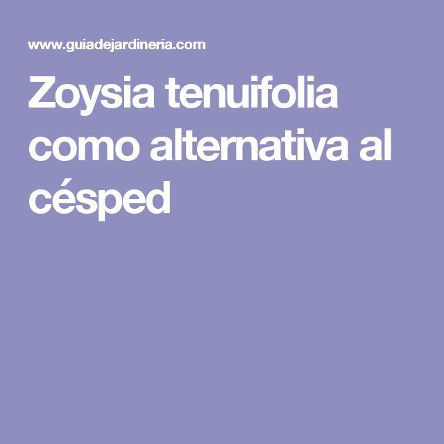 Zoysia tenuifolia como alternativa al césped
