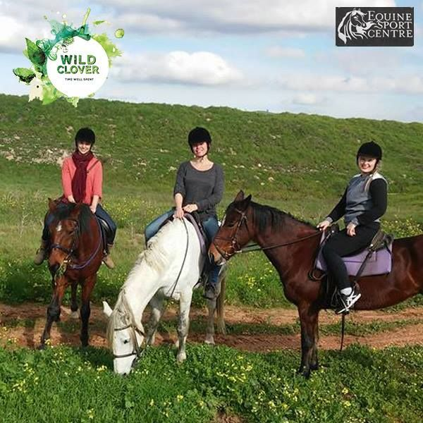 Enjoy a horse riding birthday special. This package consist of a trail ride where the person who's birthday it is rides for free! A maximum of 10 persons at a time.  For more information: http://ow.ly/AZ6N303KM1e