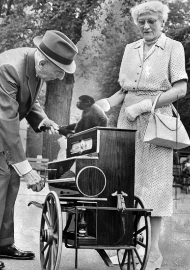 A monkey and an organ grinder at Belle Isle in 1959 ((The Detroit News)/)    From The Detroit News: http://www.detroitnews.com/article/20120724/METRO01/207240419#ixzz23jCpwbrc