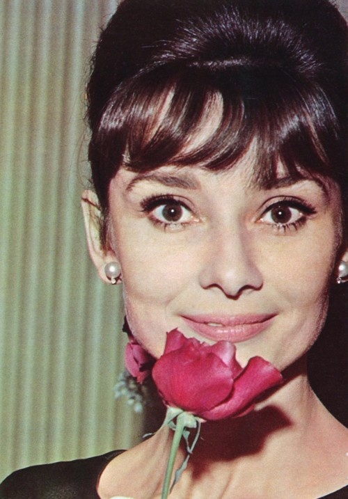 I could not get enough of seeing her while she was alive, and I still can't get enough.  //Audrey Hepburn.