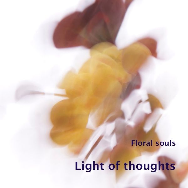 The light of smiling flowers, Fragile as the thoughts Of a long past tender moment  'Light of thoughts' is a photo in the gallery 'Floral souls'. I made this photo Apr…