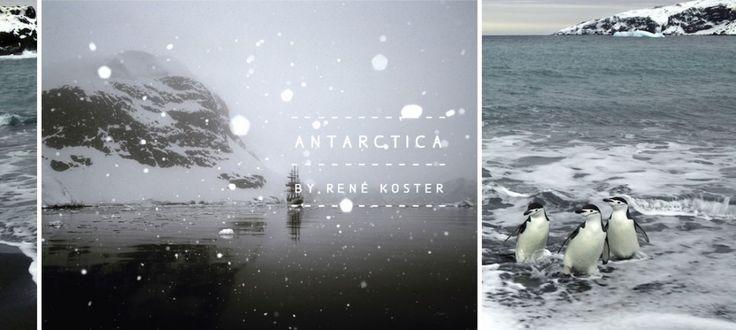 旅行到南極洲吧:在遼闊的淨土中感受另一種生命力量 1