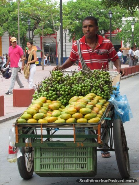 Street cart of mangos and mamons in Santa Marta, Colombia.