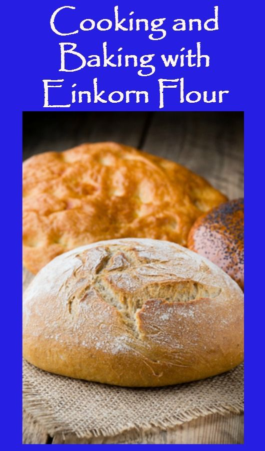 Here are 7 things to know about cooking and baking bread with Einkorn flour, a gorgeous ancient wheat flour that makes delicious bread, rolls and pizza. Einkorn wheat  | Ancient grains