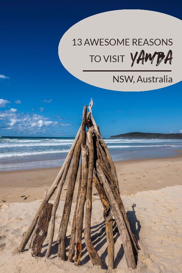 There are many reasons to visit Yamba in NSW, Australia. Here are 13 ideas to get you started.