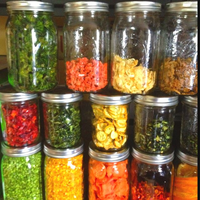 What Is A Good Food Dehydrator