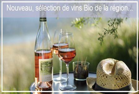du vin bio pour toutes les occasions rouge, rosé ou blanc, en bouteille ou en bib comme vous le préférez